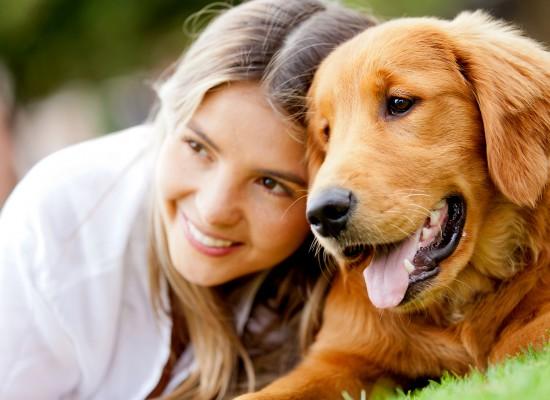 Cães adestrados auxiliam diabéticos em momentos de crise